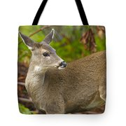 In The Woods Tote Bag
