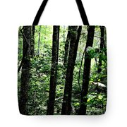 In Touch With Creation Tote Bag