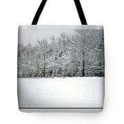 In Winter's Light Tote Bag