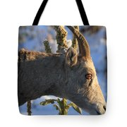 In Your Face Tote Bag