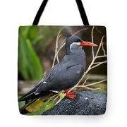Inca Tern Tote Bag