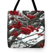 Incased Berries Tote Bag