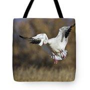 Incoming Snow Goose Tote Bag