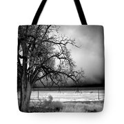 Incoming Storm Tote Bag by Cat Connor