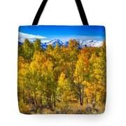 Independence Pass Autumn Colors Tote Bag