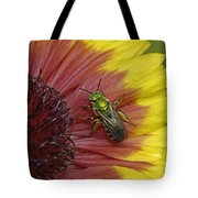 Indian Blanket And Bee Tote Bag