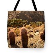 Indian Canyon Tote Bag