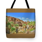 Indian Canyons View In Palm Springs Tote Bag