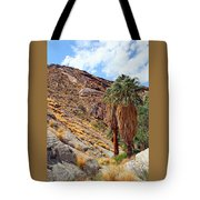 Indian Canyons View With Two Palms Tote Bag