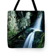 Indian Falls Tote Bag