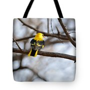 Indian Golden Oriole Tote Bag