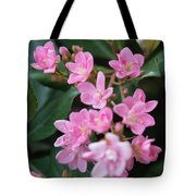 Indian Hawthorn Blossoms Tote Bag