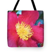 Indian Hawthorne Tote Bag