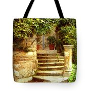 Indian Institute Of Advanced Study Tote Bag
