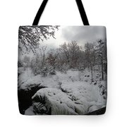 Indian Leap In Winter Tote Bag
