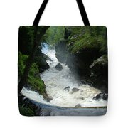 Indian Leap Overhead Tote Bag