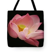 Indian Lotus On Black --- Sacred Light Tote Bag