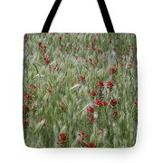Indian Paintbrush And Foxtail Barley Tote Bag