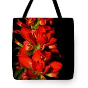Indian Paintbrushs For Mom Tote Bag