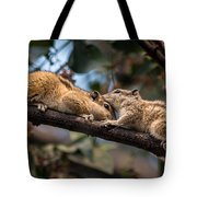 Indian Palm Squirrel Tote Bag