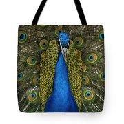 Indian Peafowl Male In Full Display Tote Bag