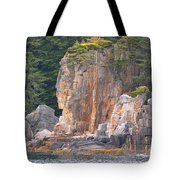 Indian Rock  Tote Bag