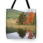 Indian Summer Acadia Park Tote Bag