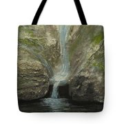 Indian Well Tote Bag