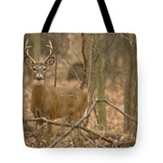 Indiana Buck  Tote Bag