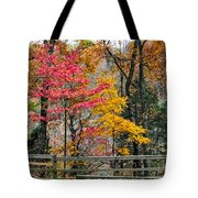 Indiana Fall Color Tote Bag by Alan Toepfer
