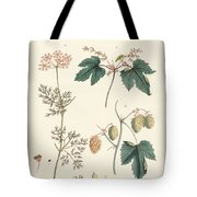 Indigenous Spice Plants Tote Bag