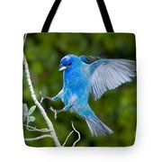 Indigo Bunting Alighting Tote Bag