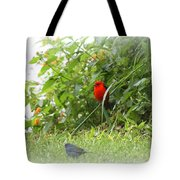 Indigo Bunting And Scarlet Tanager 2 Tote Bag