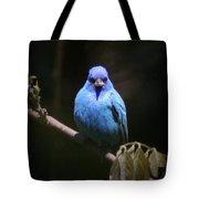 Indigo Bunting - Img 430-025 Tote Bag