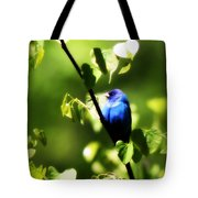 Indigo Bunting - Img_459-002 Tote Bag