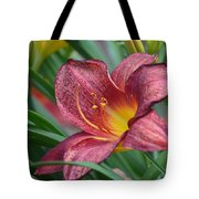 Inflamed - Lily Tote Bag