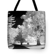 Infrared Delight Tote Bag