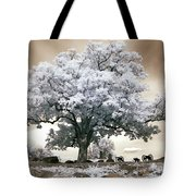 Infrared Tree On A Hill In Gettysburg Tote Bag by Paul W Faust -  Impressions of Light