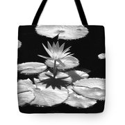 Infrared - Water Lily 02 Tote Bag