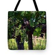 Inglenook Vineyard -11 Tote Bag
