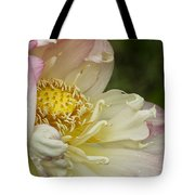 Inner Beauty Of The Lotus Tote Bag