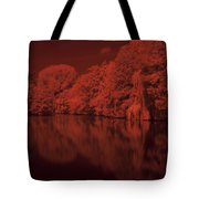 Inner City Lake Tote Bag