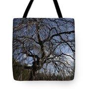 Inner Energy In Full Blossom 1 Tote Bag