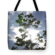 Inner Energy In Full Blossom 3 Tote Bag