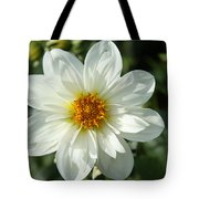 Innocent White Tote Bag