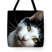 Inquisitive Kitty Tote Bag