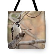 Inquisitive Woodpecker Tote Bag