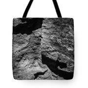 Inscription Rock 30 Tote Bag