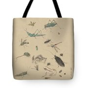 Insects C1825 Tote Bag
