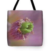 Inside A Cactus Tote Bag